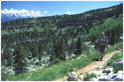 Plateau du Granier
