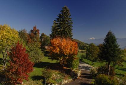 jardin à l'automne et vue sur Mont Blanc